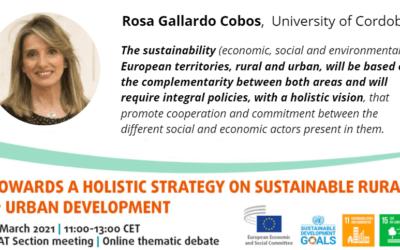 Online thematic debate: Desarrollo sostenible – 08/03/21